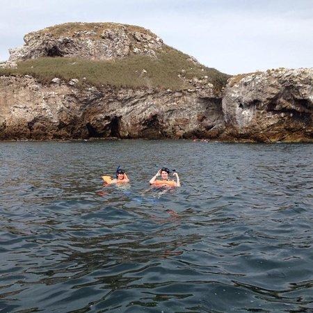 Sayulita Entourage: Snorkeling at Marietas Islands