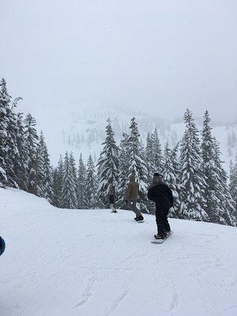Government Camp, OR: Très belle pentes de ski, Beaucoup de neige et tres bien entretenu