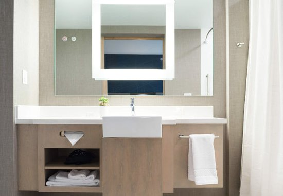 Guest Bathroom at SpringHill Suites by Marriott Austin Cedar Park