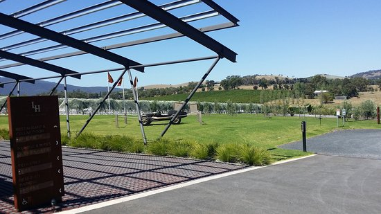 Levantine Hill Winery