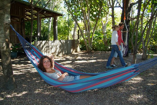 Aussie Woolshed Backpackers Hervey Bay, Fraser Island: Relaxing in one of our many hammocks
