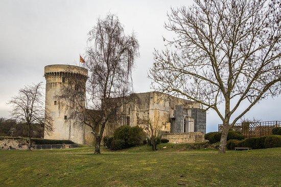 Falaise, Frankrike: Le chateau