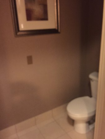 BEST WESTERN PLUS Bayside Hotel: Large beautiful room with lots of amenities.