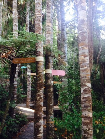Brick Bay Sculpture Trail: A reminder of the historic destruction of our kauri forests