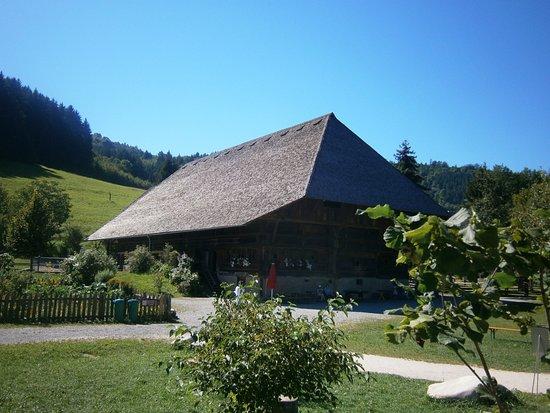Foto de Gutach im Schwarzwald