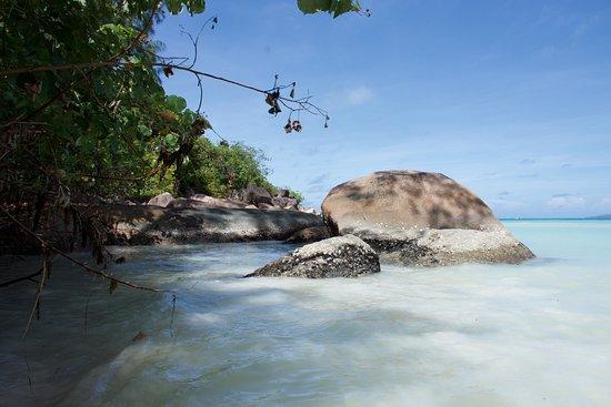 Praslin, Seychellerna: So müssen die Seychellen aussehen..