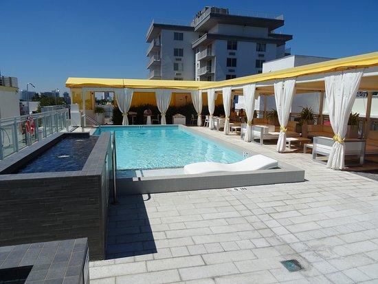 Leslie Hotel Rooftop Pool
