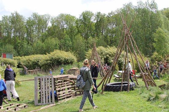 Kraggenburg, Hollanda: Big bamboo play forrest