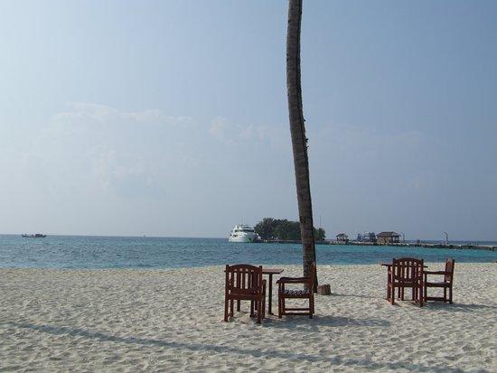 Kuredu Island Resort & Spa: repas sur la plage