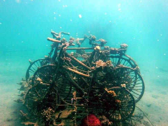 Biorock Pemuteran bali: Велосипеды