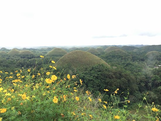 Dumaluan Beach Resort: Chocolate Hills