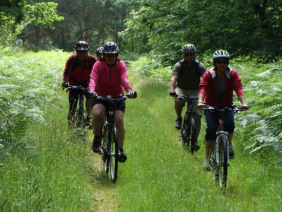 Parcay-les-Pins, France: Great off road cycling if you want it