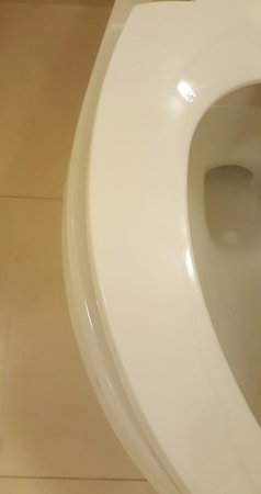 Austin Marriott North The Toilet Seat That S Too Small For