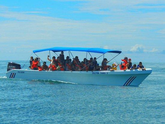 Transporte de Turismo Pastel