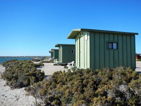 Baja Ecotours: The camp cabins. Basic but comfortable!