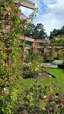 Invercargill, New Zealand: giardino