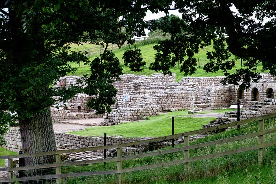 Hexham, UK: Chester's Fort foundations