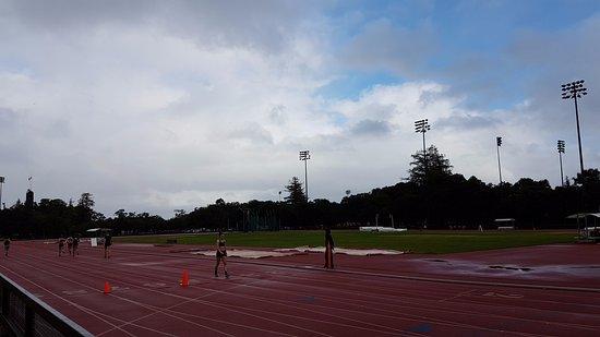 Palo Alto, CA: Field