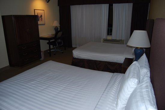 Airtel Plaza Hotel Picture