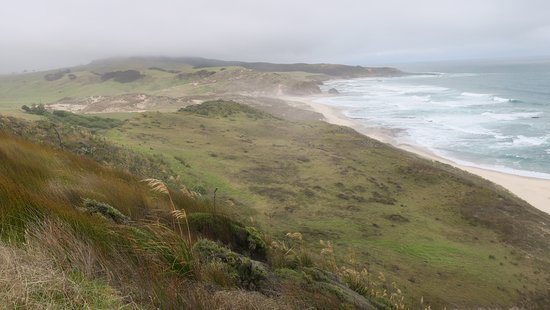 Opononi, New Zealand: view of pasturelands and beaches