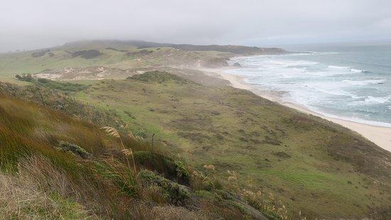 Opononi, นิวซีแลนด์: view of pasturelands and beaches
