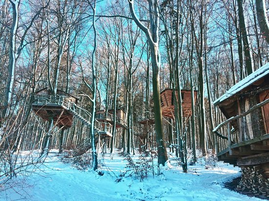 Robins Nest Baumhausherberge Prices Campground Reviews