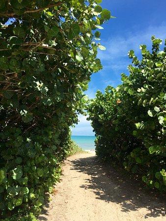 Paradise Beach & Park: photo0.jpg