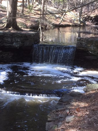 Broadmoor Wildlife Sanctuary: Small dam and waterfall