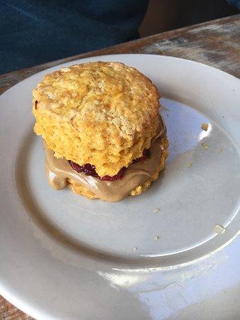 Handsome Biscuit: photo1.jpg