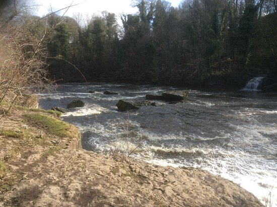 Carperby, UK: Lower Aysgarth falls