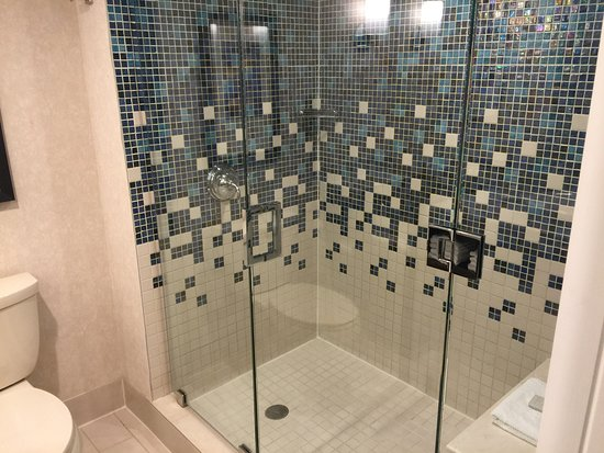 DoubleTree by Hilton Hotel Syracuse: Shower only