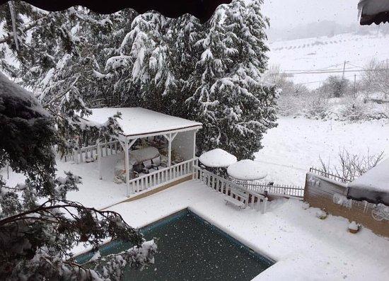 Villa Pine Garden Stanbul T Rkiye Otel Yorumlar Ve