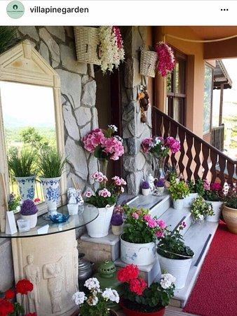 Villa Pine Garden Updated 2017 Hotel Reviews Price