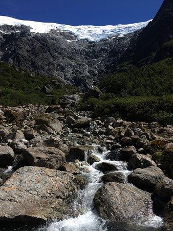 Parque nacional Queulat, Chile: Sendero Bosque Encantado
