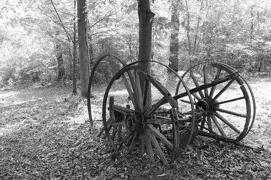 Washington, GA: Many exterior objects to see that would have been at Callaway Plantation!