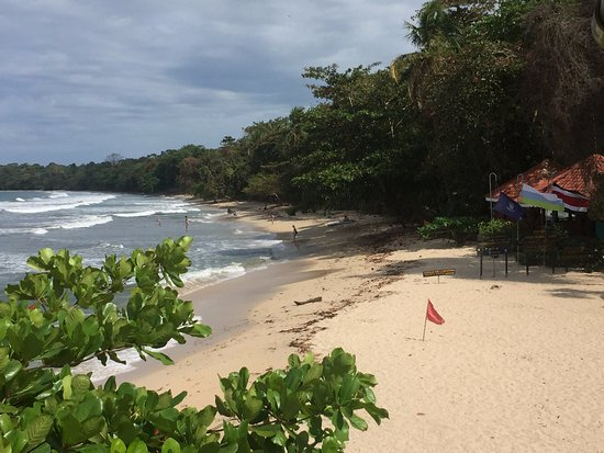 Cahuita National Park Hotel: View from the porch!