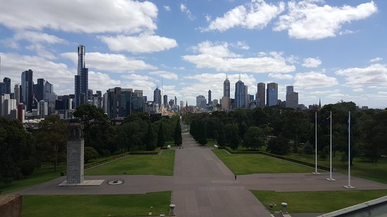 Freddy's Bike Tours: View from the Shrine of Remembrance