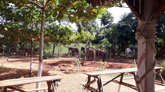 Valle de Vinales: Hier gibt es fantastische Drinks