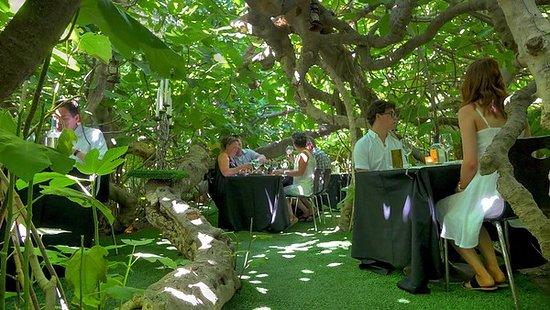 Fig Tree Restaurant Kangaroo Island