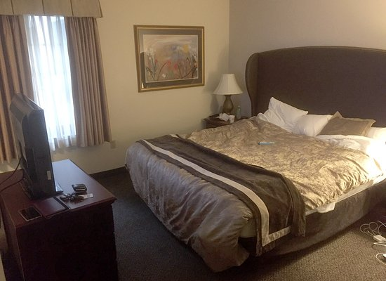 Best Western Plus The Normandy Inn Suites Minneapolis