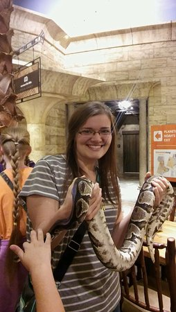 Petersburg, KY: First time holding a Ball Python!