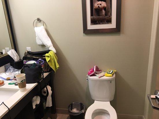 toilet seat no lid. La Quinta Inn  Suites Branson Hollister No Lid On Toilet Seat Picture Of