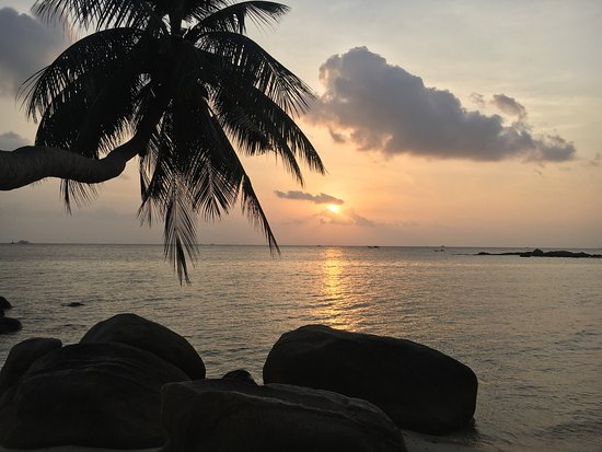 Sunset Cove Resort : The Sunset!