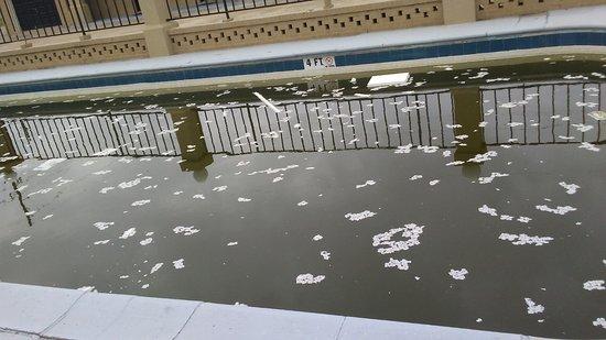 Budget Inn Monroe: Disgusting, want to swim ?