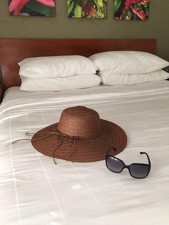 El Paseo Hotel Image