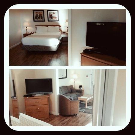 Howard Johnson Hotel and Suites Victoria Elk Lake : Pet Friendly Junior Suite