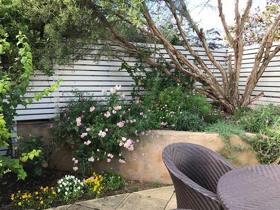 Beach Huts Middleton: Garden