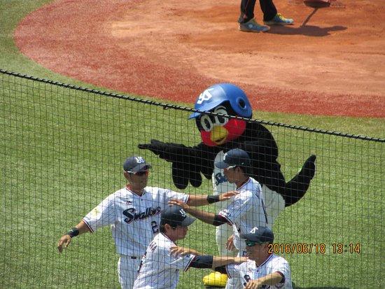 Photo of Athletics and Sports Jingu Baseball Stadium at 霞ヶ丘町3-1, Shinjuku 160-0013, Japan