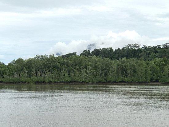 Mount Santubong: photo4.jpg
