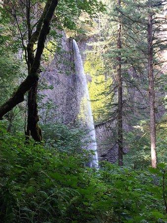 Corbett, Орегон: The trail winds up around the left of the falls